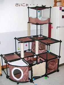 SPORTPET CAT CITY 使用例4