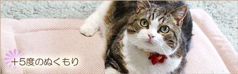 猫のあったかマット