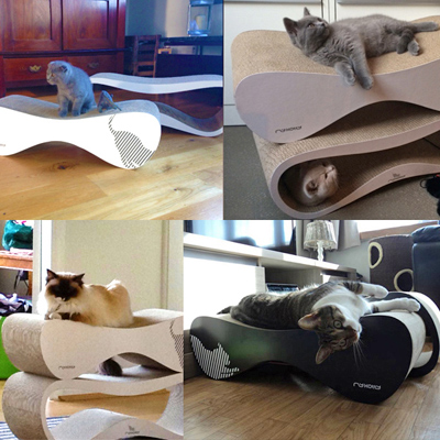 ll_set_cats.jpg