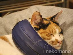 べらちゃん、ムーンカラー枕