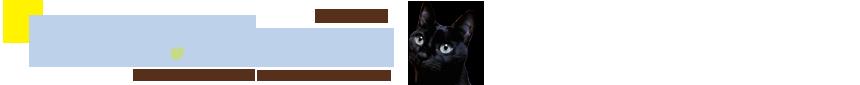 猫の安全おもちゃ、おやつ、生活用品通販nekomono(ねこもの)